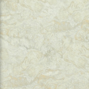 BN Wallcoverings, van Gogh 2015 17171