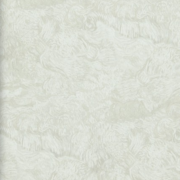 BN Wallcoverings, van Gogh 2015 17172