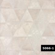 Skin 5066-1, Arte