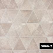 Skin 5066-2, Arte