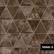 Skin 5066-5, Arte