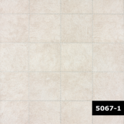 Skin 5067-1, Arte
