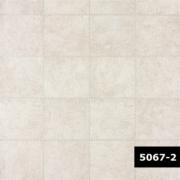 Skin 5067-2, Arte
