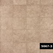 Skin 5067-3, Arte