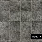 Skin 5067-7, Arte