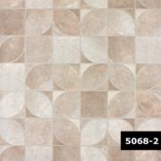 Skin 5068-2, Arte
