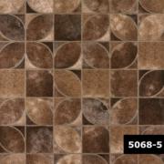 Skin 5068-5, Arte