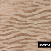 Skin 5069-2, Arte