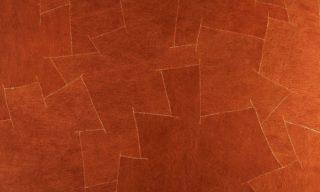 orange-bark-3000