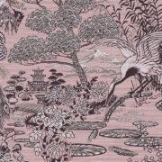 Curiosa, Arte - Lotus 13501