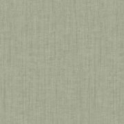 Hooked on Walls, Passenger, Texture 16807