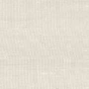 Paleo, Arte - Latus 50501