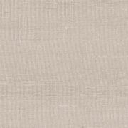 Paleo, Arte - Latus 50506