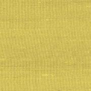 Paleo, Arte - Latus 50507