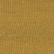 Paleo, Arte - Latus 50509