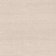 Paleo, Arte - Latus 50512