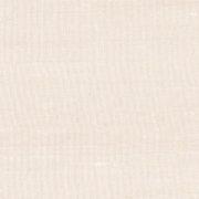Paleo, Arte - Latus 50513