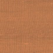 Paleo, Arte - Latus 50514