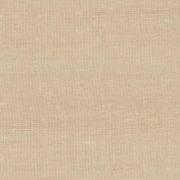 Paleo, Arte - Latus 50518