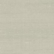 Paleo, Arte - Latus 50520